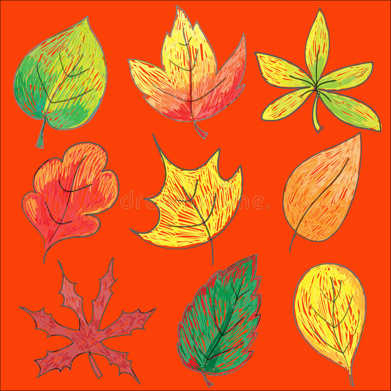 Download Autumn leaf stock vector. Illustration of falling, decorate - 25712482