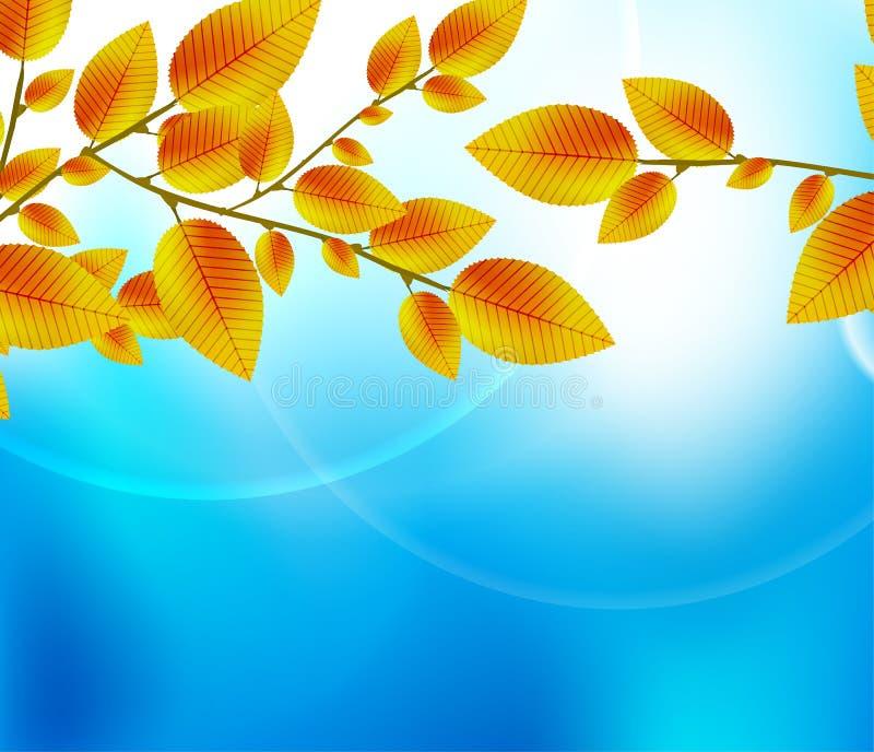 Autumn Leaf Background Stock Images