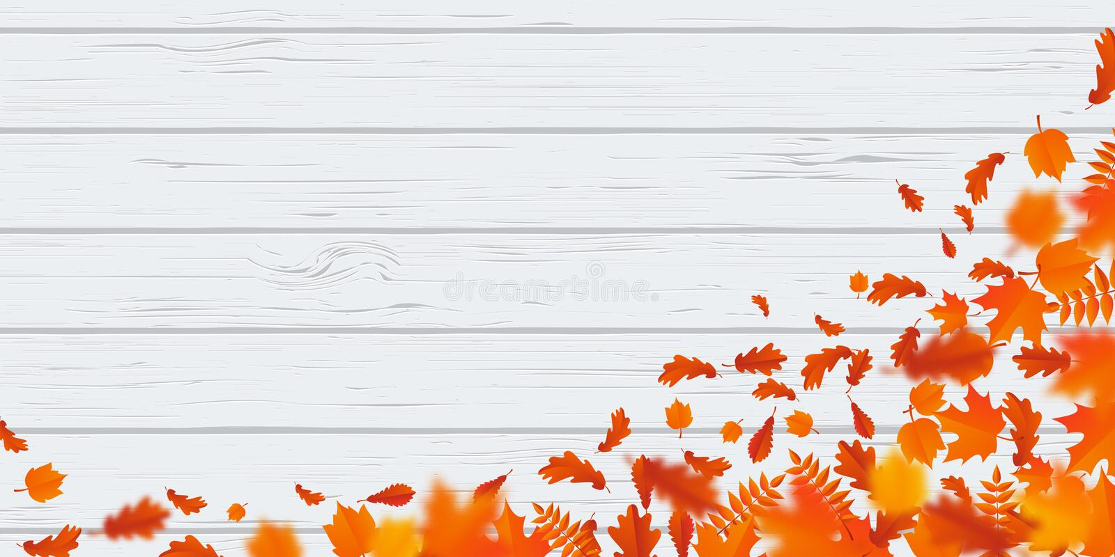 Autumn leaf fall pattern autumanl falling leaves on vector wooden background. Autumn leaf fall or autumnal falling leaves pattern on white wooden background stock illustration