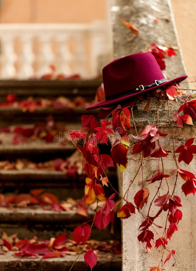 Autumn leaf fall. Red and yellow leaves on the destroyed old stone steps burgundy (marsala color) hat. Autumn leaf fall. Red and yellow leaves on the destroyed royalty free stock photos