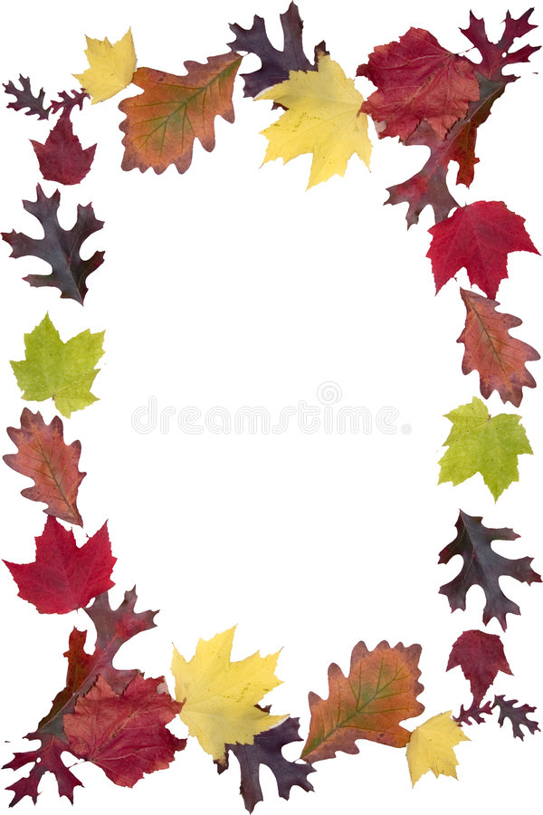 Autumn Leaf Frame. A frame a beautifully colored autumn leaves royalty free stock image