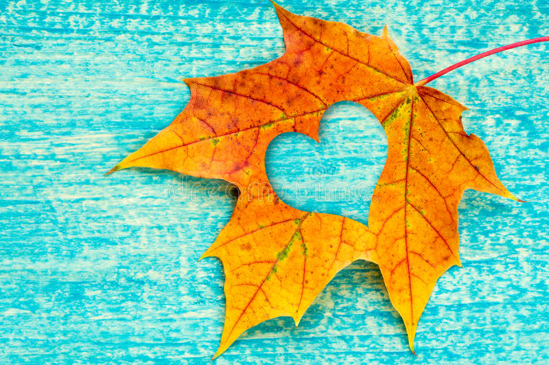 An Autumn Leaf With Heart Shaped Cutout Stock Image ...