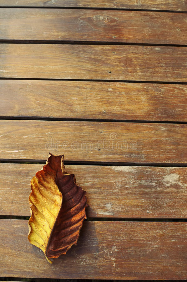 Download Autumn Leaf Over Wooden Background Stock Photo - Image: 26575304
