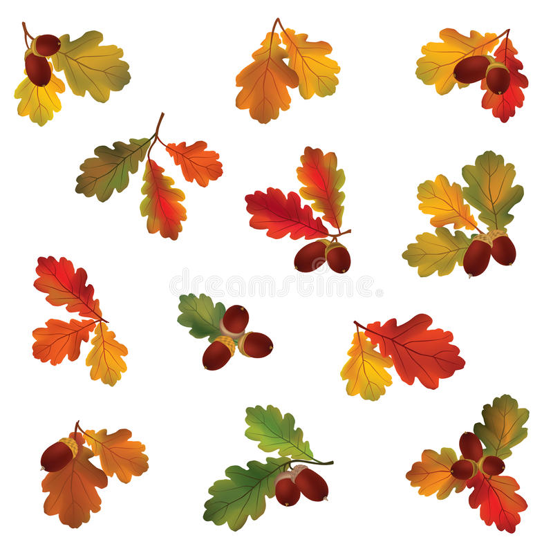 Autumn leaf set. Fall leaves icons. Nature symbol. Autumn icon set. Fall leaves and berries. Nature symbol collection isolated on white background royalty free illustration