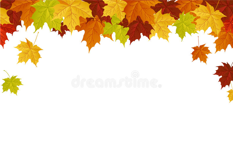 Autumn leafs vector illustration