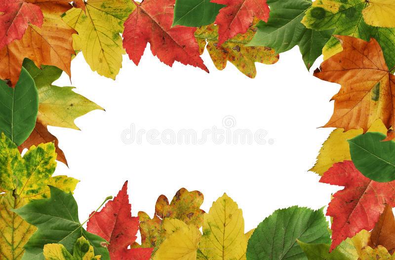 Download Autumn Leafs Frame Royalty Free Stock Photo - Image: 16289265