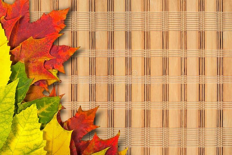 Download Autumn Leaves imagen de archivo. Imagen de arce, hoja - 100527153
