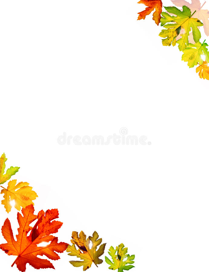 Download Autumn leaves stock photo. Image of bokeh, natural, bright - 10982860