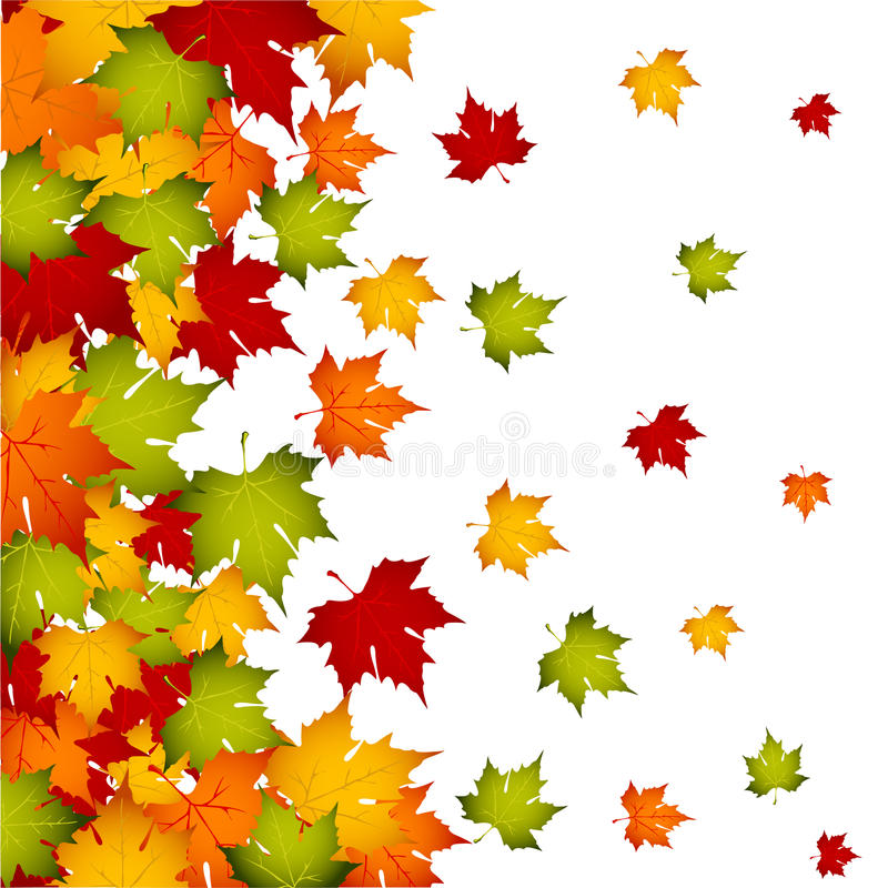 Download Autumn Leaves Stock Photography - Image: 13412432