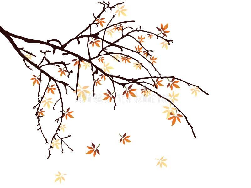 Autumn leaves stock illustration
