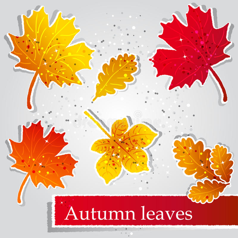 Download Autumn leaves stock vector. Image of life, design, drawing - 21971444