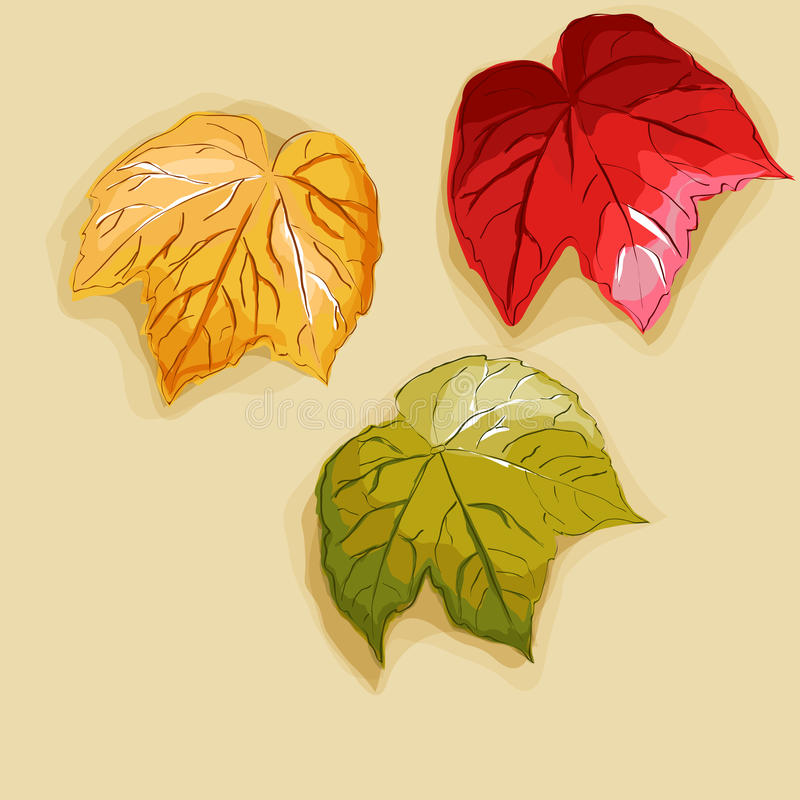 Download Autumn leaves stock vector. Image of style, painted, drawn - 26340734