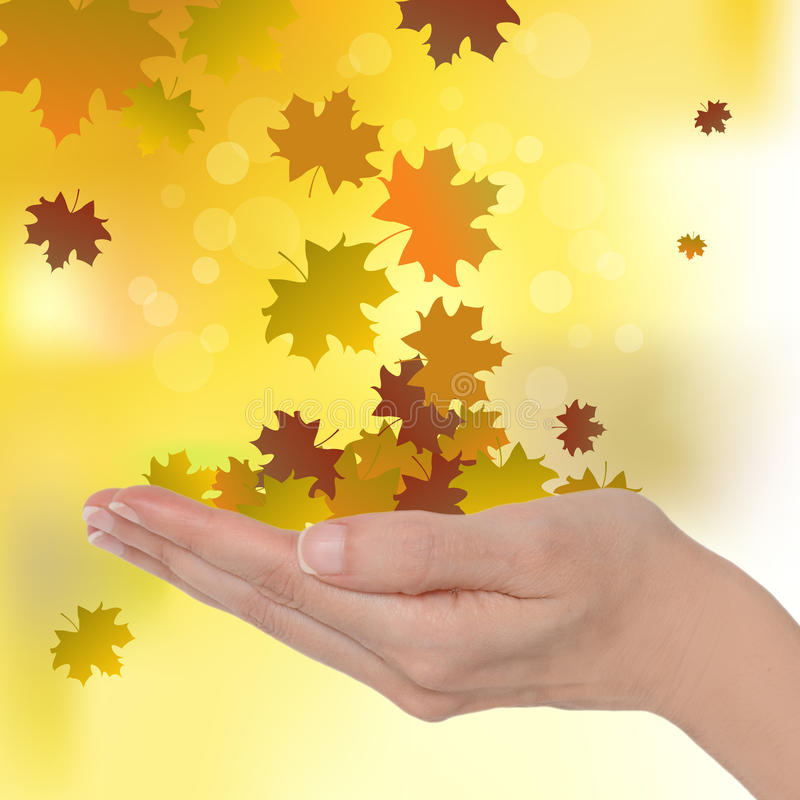 Download Autumn Leaves Stock Photo - Image: 26738910