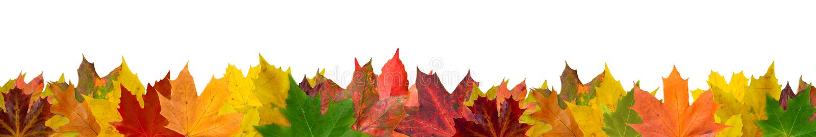 Autumn Leaves libre illustration