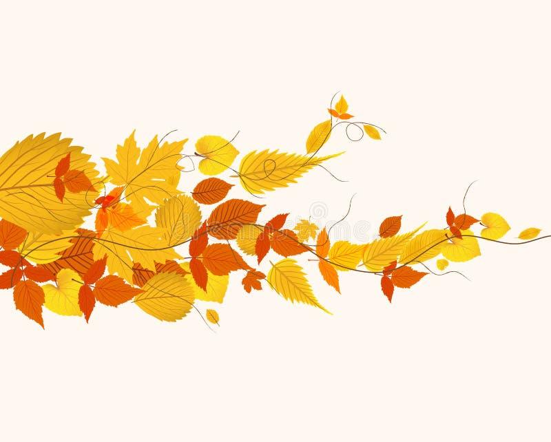Autumn Leaves ilustração do vetor