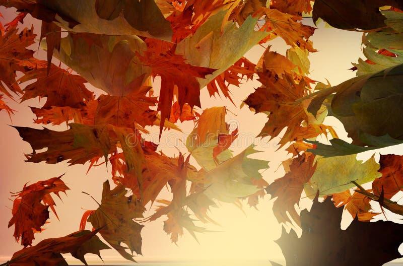 Download Autumn Leaves illustration stock. Illustration du forêt - 45370424