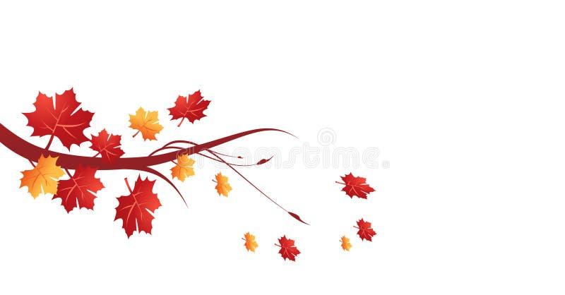 Autumn leaves. Vector illustration on white