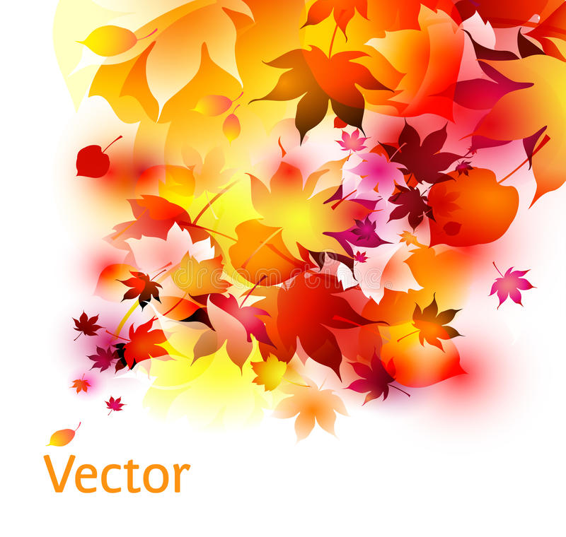 Autumn leaves abstract background stock photo
