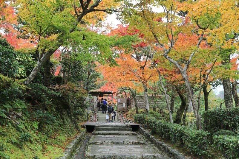 Autumn Leaves Of Adashino Nenbutsu -nenbutsu-ji royalty-vrije stock fotografie