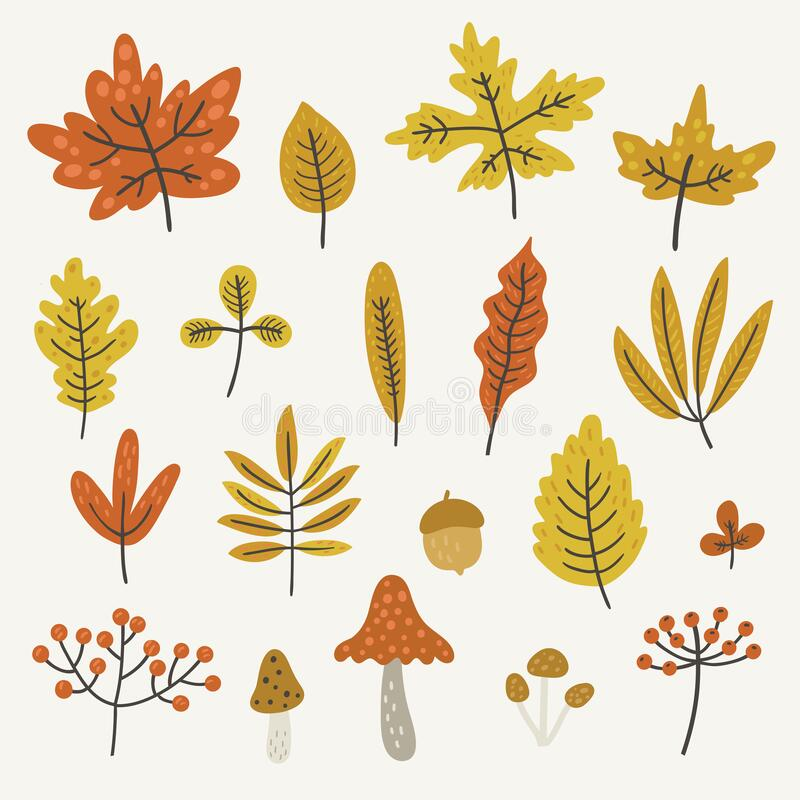 Free Autumn Leaves And Mushrooms, Vector Set Royalty Free Stock Photography - 196983967