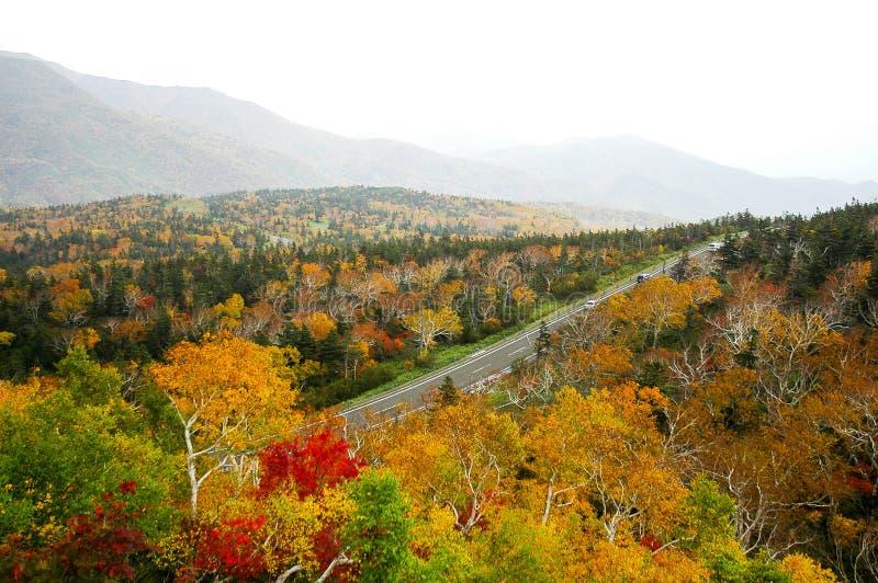 Autumn Leaves au passage de Shiretoko, Hokkaido, Japon image stock