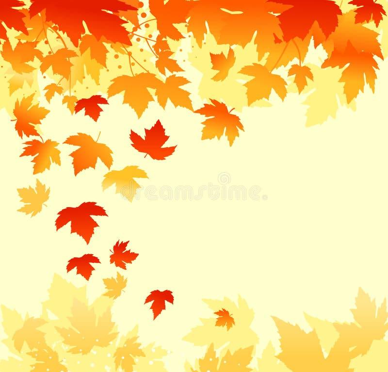Autumn leaves background stock photo