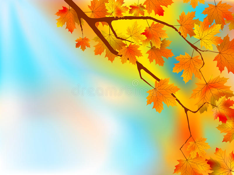 Autumn leaves background in a sunny day. stock illustration