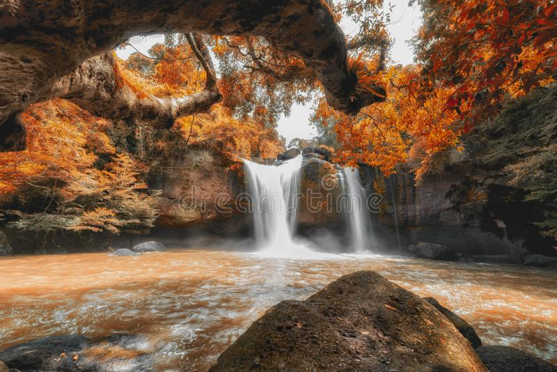 Autumn Leaves bij de Waterval van Haew Suwat royalty-vrije stock afbeelding