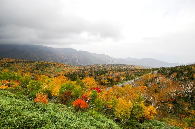Autumn Leaves bij Shiretoko-Pas, Hokkaido, Japan royalty-vrije stock afbeeldingen