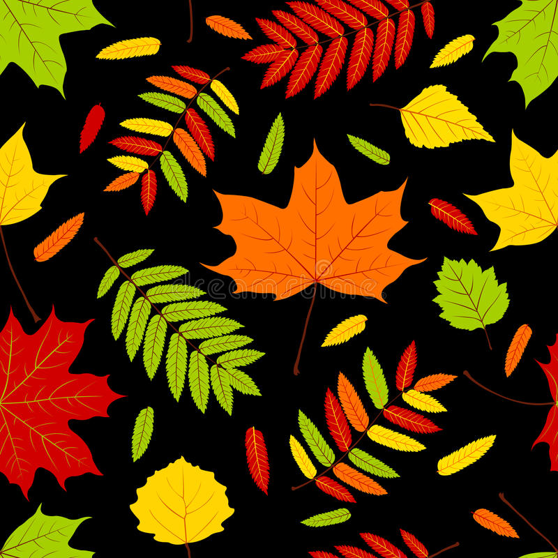 Download Autumn Leaves On The Black. Stock Photography - Image: 21422832