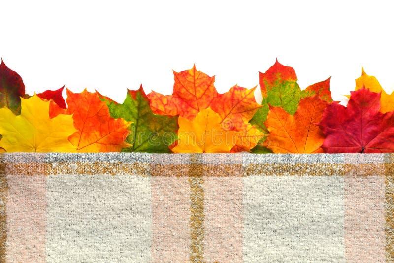 Autumn Leaves Border imágenes de archivo libres de regalías