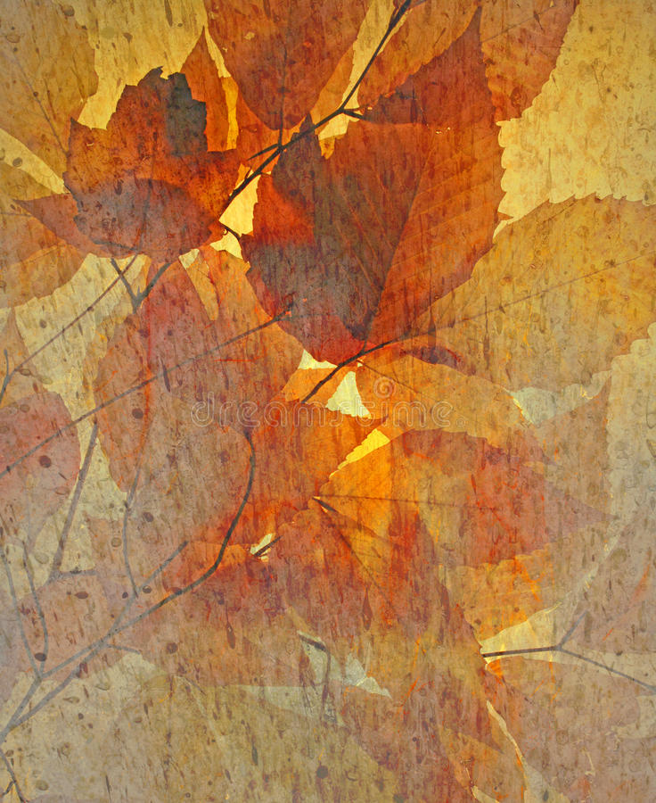 Autumn Leaves com textura chuvosa foto de stock royalty free