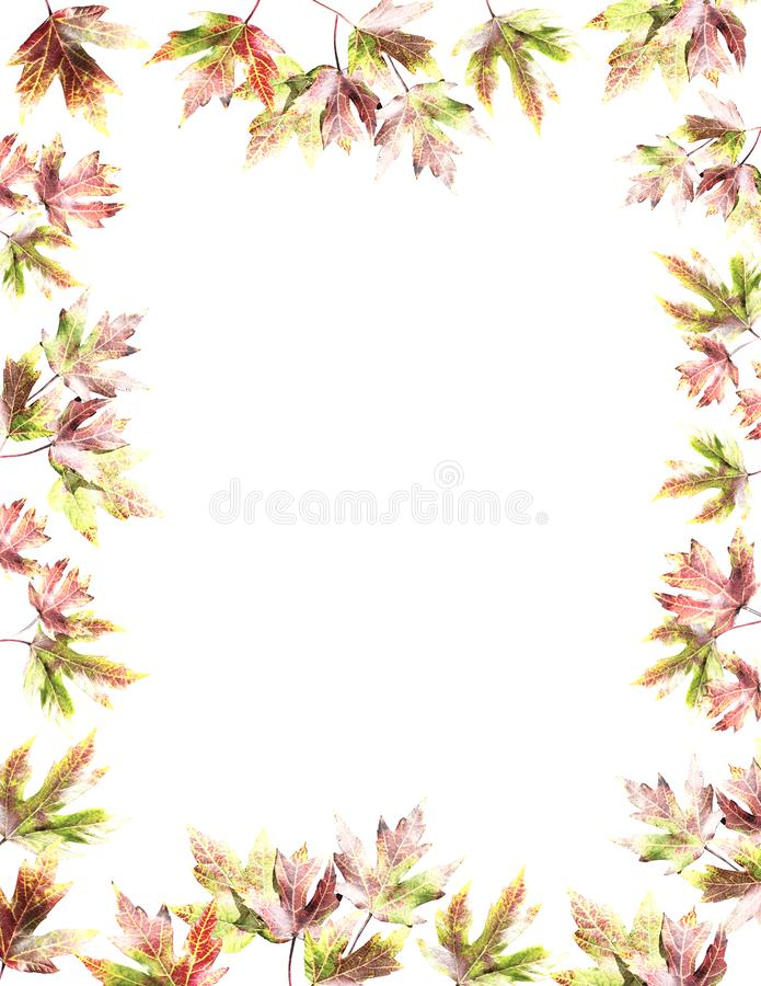 Beautiful fall maple leaves vintage background royalty free illustration