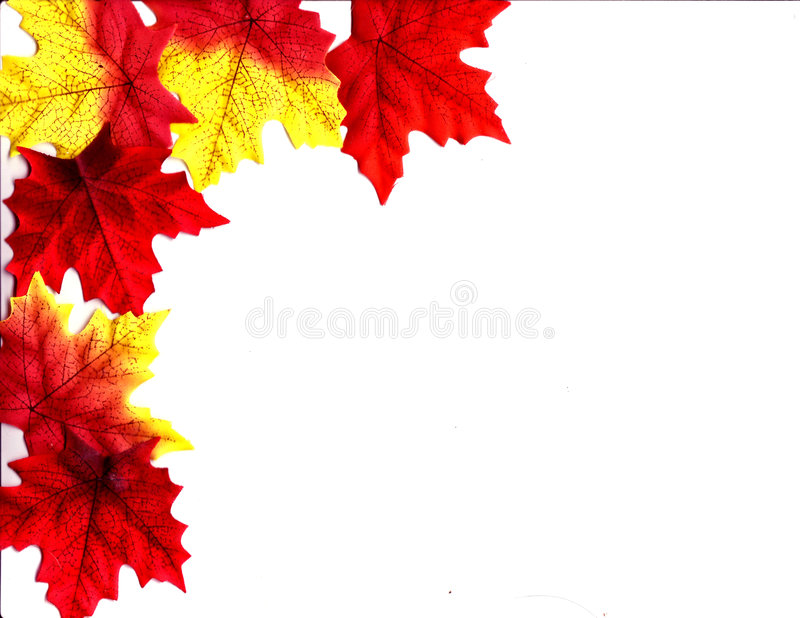 Autumn Leaves Design. An autumn design illustrated background with leaves of fall colors vector illustration