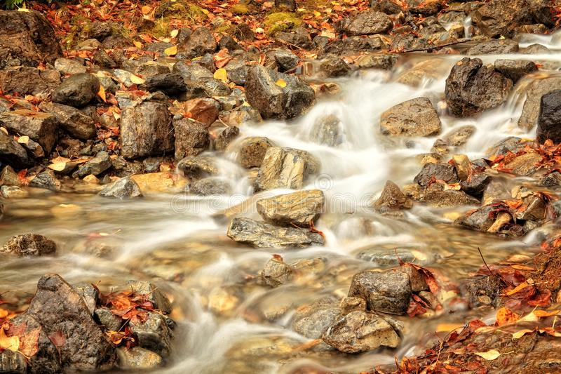 Autumn Leaves in einem Wasserfall lizenzfreie stockbilder