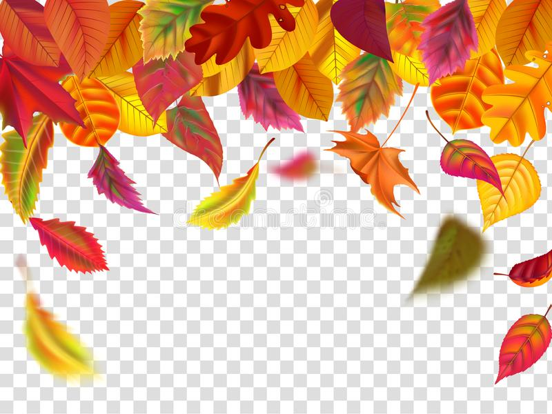 Autumn leaves fall. Falling blurred leaf, autumnal foliage fall and wind rises yellow leaves isolated vector. Autumn leaves fall. Falling blurred leaf, autumnal stock illustration