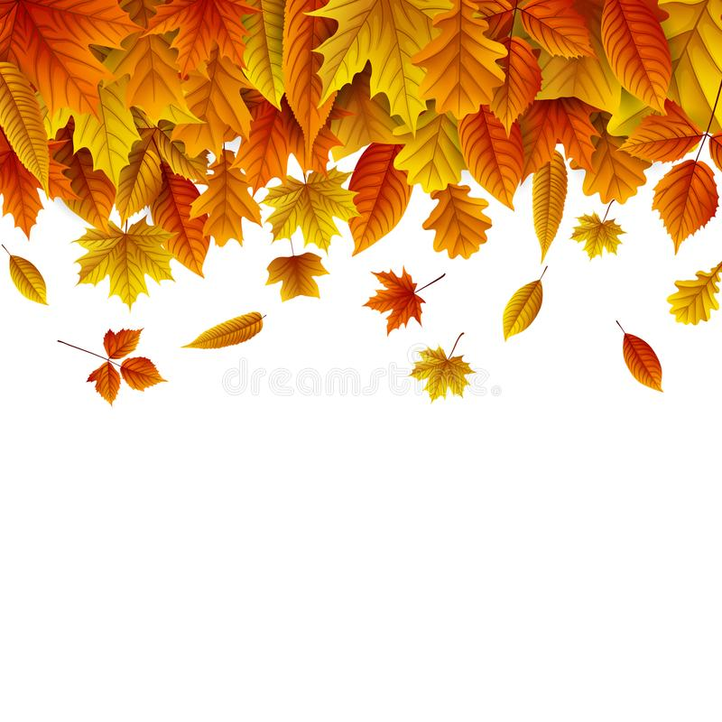 Autumn leaves falling isolated on white background royalty free illustration