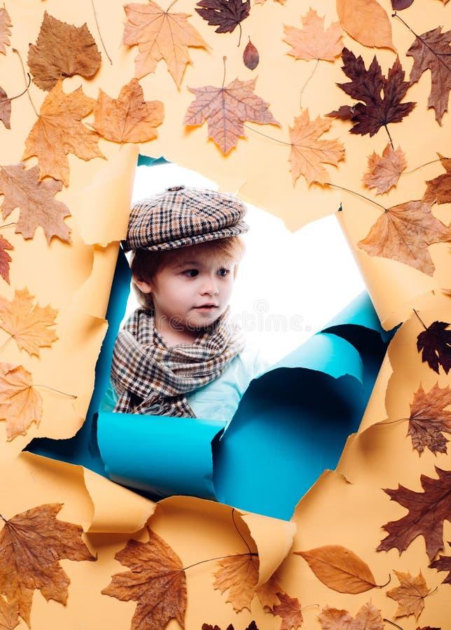 Autumn Leaves Festival Logotipo para o seu Modelo de marcagem com ferro quente Ligações patrocinadas Vestido do outono Alegrias d foto de stock
