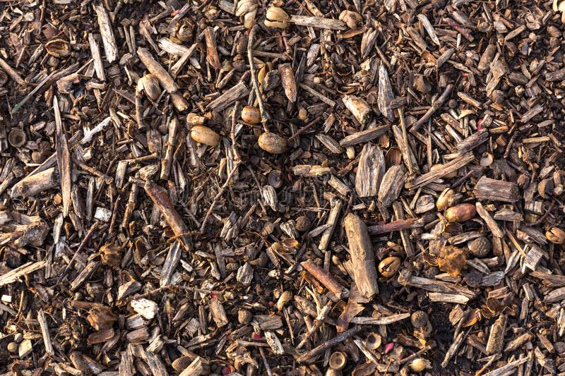 Earth ground covered with compost mulch fragment as a texture background stock photos