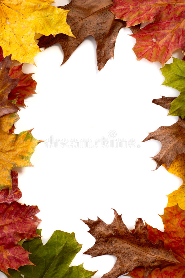Free Autumn Leaves Frame Royalty Free Stock Photos - 1520978