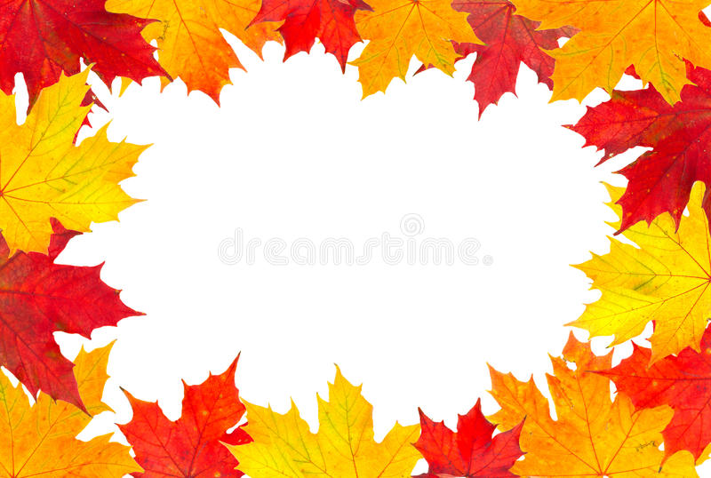 Autumn leaves frame royalty free stock photos