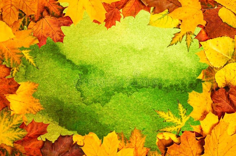 Autumn Leaves Frame royalty-vrije stock afbeelding
