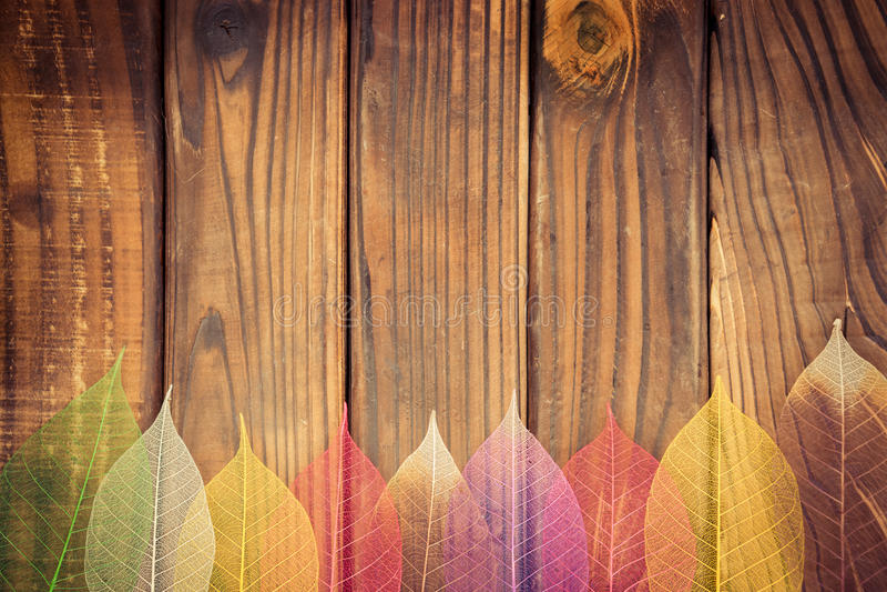 Autumn Leaves Frame imagens de stock royalty free