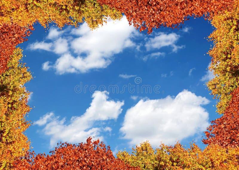 Autumn Leaves Frame fotografia stock