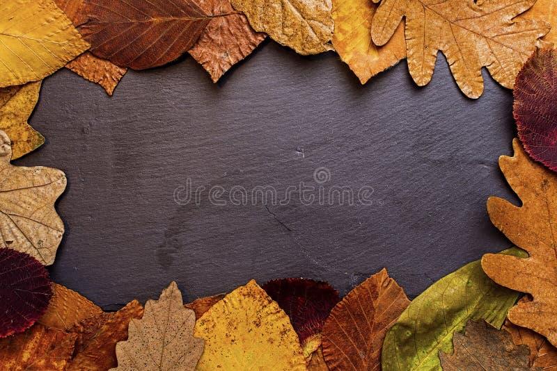 Autumn Leaves Frame auf dunklem Steinhintergrund Autumn Concept Wallpaper lizenzfreie stockfotos