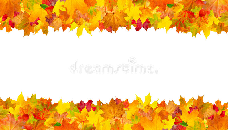 autumn leaves frame horizontal background stock images