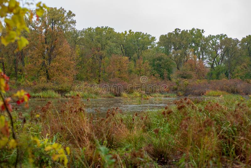 Autumn leaves frame the bird refuge in Presque Isle stock photography