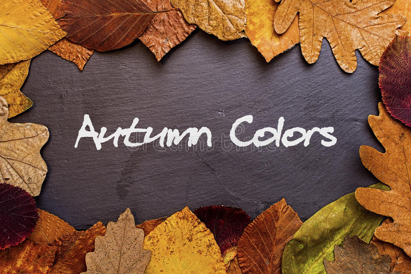 Autumn Leaves Frame en fondo de piedra oscuro Autumn Colors Concept Wallpaper fotografía de archivo