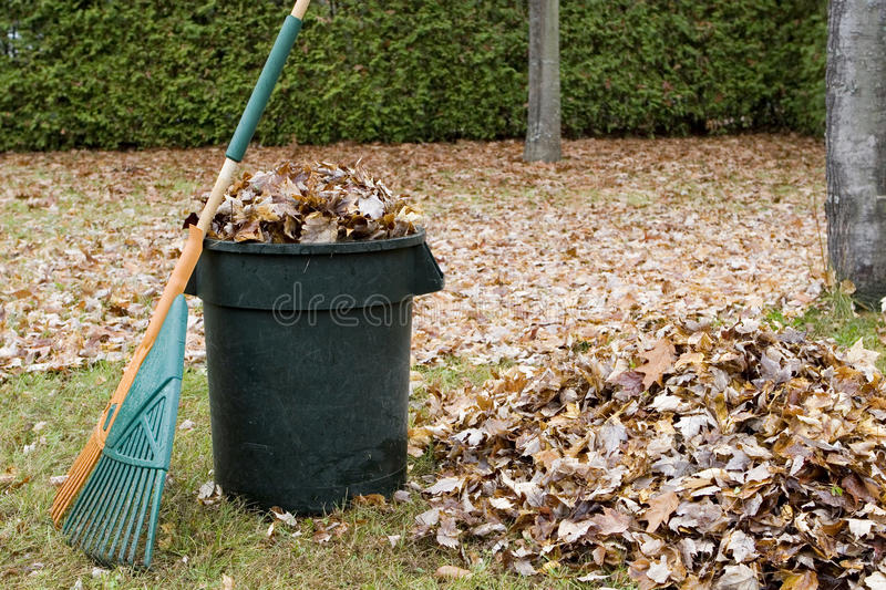 Download Autumn Leaves In A Garbage Can - Horizontal Stock Photo - Image: 21102490