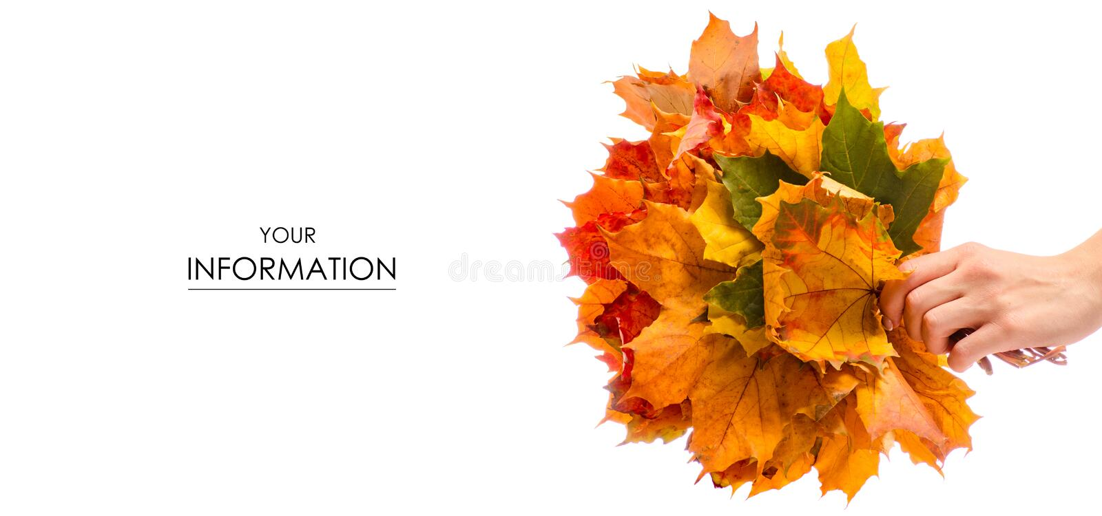 The autumn leaves in hand pattern stock photo
